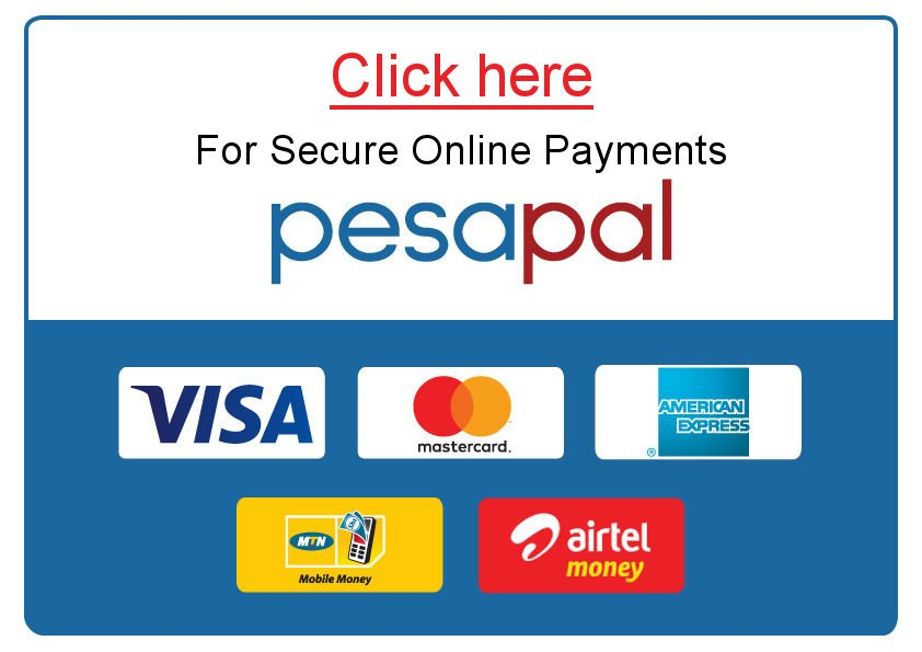 Secure Payments Online